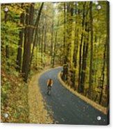 Biker On Road Amidst Fall Foliage Acrylic Print