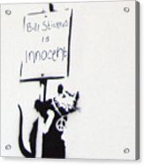 Bill Stickers Is Innocent Acrylic Print by Amy Bernays
