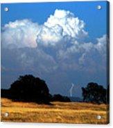 Billowing Thunderhead Acrylic Print by Frank Wilson
