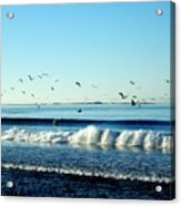 Billowing White Waves And Seagulls Acrylic Print