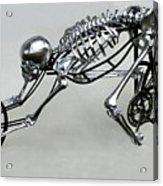 Bio Cycle Acrylic Print