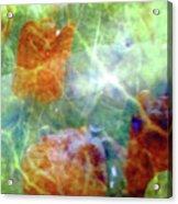 Bio Life Acrylic Print