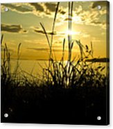 Birch Bay Sunset Acrylic Print
