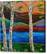 Birch By The Lake Acrylic Print
