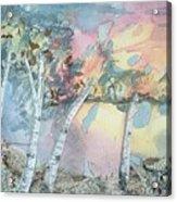 Birch Filigree Acrylic Print