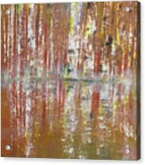 Birch In Abstract Acrylic Print