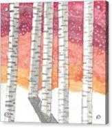 Birch In The Snow Acrylic Print