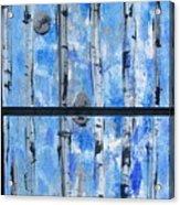 Birch Trees - Blue Acrylic Print