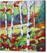 Birches 07 Acrylic Print