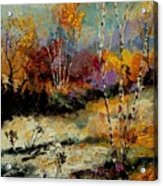 Birchtrees 459090 Acrylic Print