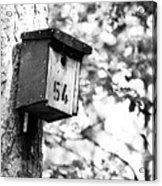 Bird 54 Where Are You Acrylic Print