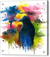 Bird 71 Crow Raven Acrylic Print