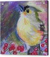 Bird And Berries Acrylic Print