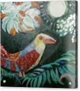 Bird And Moonshine Acrylic Print