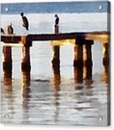 Bird Dock At Sunset Acrylic Print