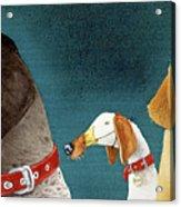 Bird Dogs... Acrylic Print
