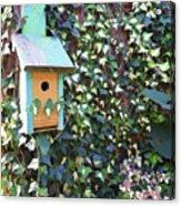 Bird Feeder In Ivy Acrylic Print