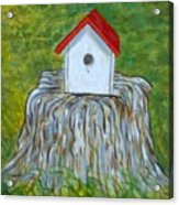 Bird House Acrylic Print