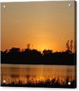 Bird In The Sunset Acrylic Print