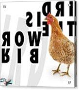 Bird Is The Word Acrylic Print