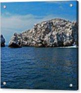 Bird Island 1 Acrylic Print