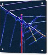 Bird Kite At Midnight Acrylic Print