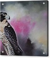 Bird N.11 Acrylic Print