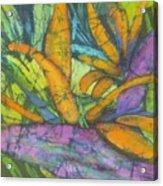 Bird Of Paradise I Acrylic Print
