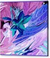 Bird Of Paradise In Blue Acrylic Print