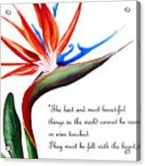 Bird Of Paradise Poem Acrylic Print