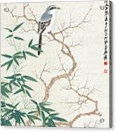 Bird On The Branch Acrylic Print