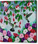 Bird Painting - Hummingbird Heaven Acrylic Print by Crista Forest