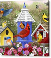 Bird Painting - Primary Colors Acrylic Print by Crista Forest