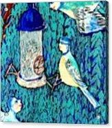 Bird People The Bluetit Family Acrylic Print by Sushila Burgess