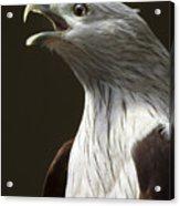 Bird Portrait Acrylic Print