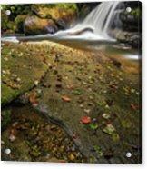 Bird Rock Falls Acrylic Print
