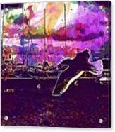Bird Seagull Ave Beach Wings Sky  Acrylic Print