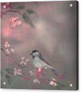 Bird Study Acrylic Print