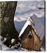 Birdhouse In Snow Acrylic Print
