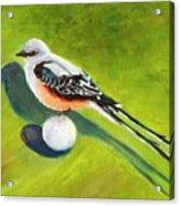 Birdie Time Acrylic Print