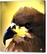 Birds 2 Acrylic Print