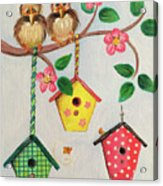 Birds And Birdhouse Acrylic Print
