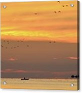 Birds And Canoe At Lake Simcoe 2  Acrylic Print