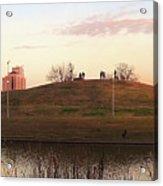 Birds And Fun At Butler Park Austin - Silhouettes 1 Panorama Acrylic Print