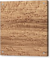 Birds-eye Pattern On Sugar Maple Wood Abstract In Nature Acrylic Print