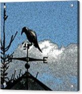 Bird's Eye View I Acrylic Print