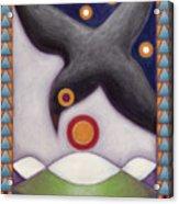 Birds Eye View Acrylic Print
