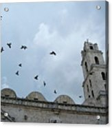 Birds Flying Above The Basilica And The Monastery Of Saint Francis Of Assisi Acrylic Print