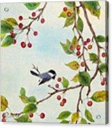 Birds In Autumn Season Acrylic Print
