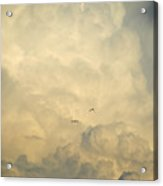 Birds In The Clouds Acrylic Print